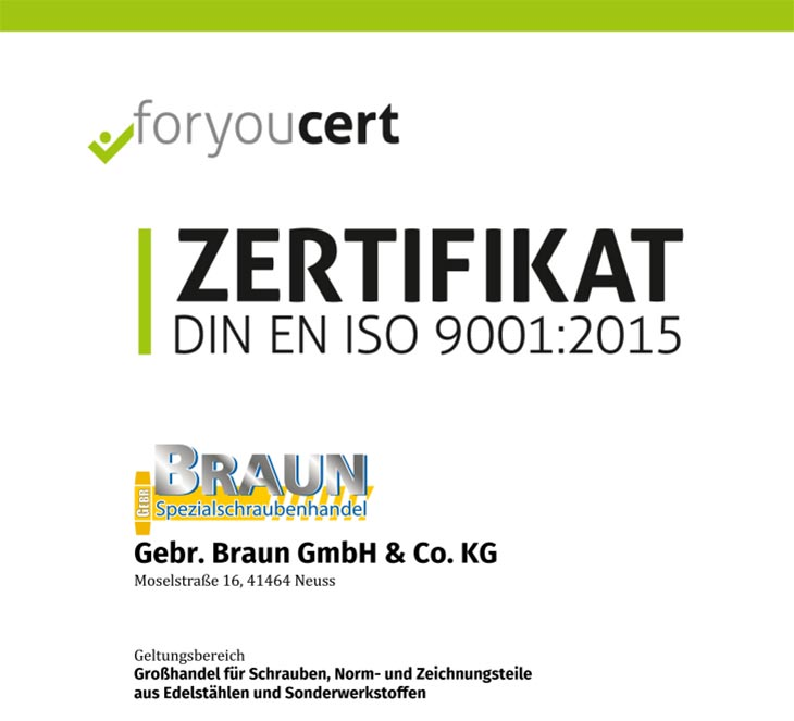 RE-Zertifizierungsaudit nach DIN EN ISO 9001:2015 Deutsch